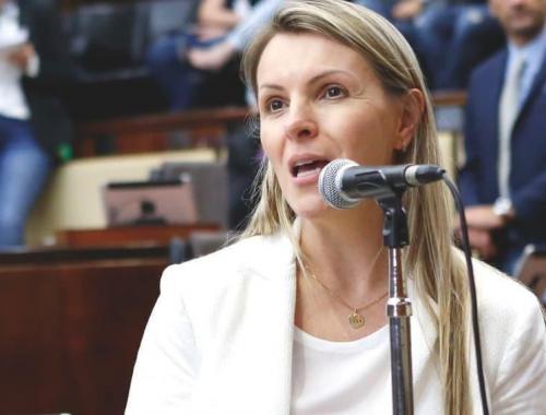 Deputada Fran Somensi